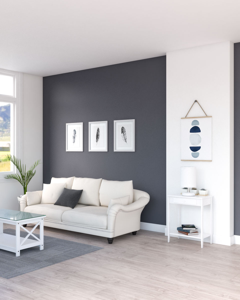 Dark gray accent wall in living room ideas