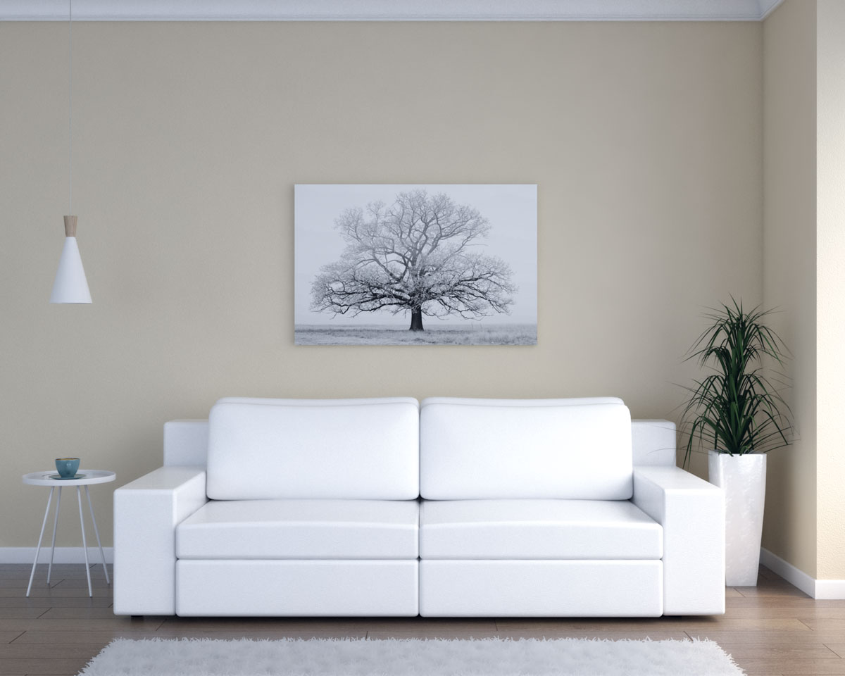 Tan living room with white furniture