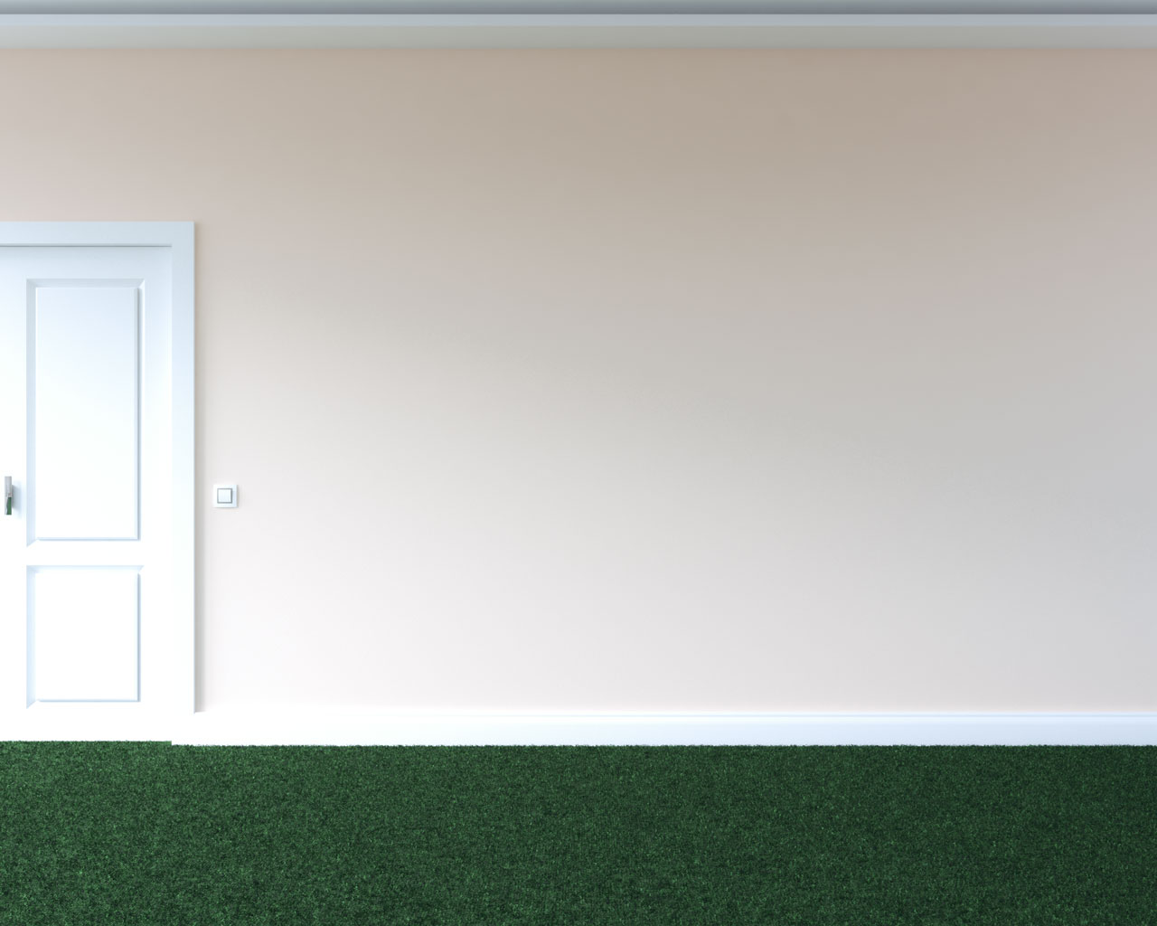 Green carpet floors with dusty coral wall