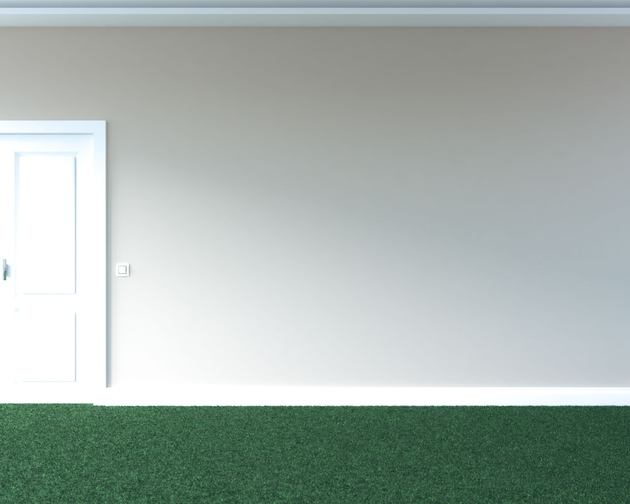 Green carpet with tan wall