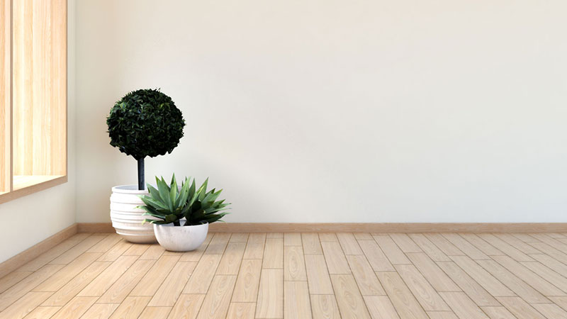 7 Best Wall Colors for Maple Floors