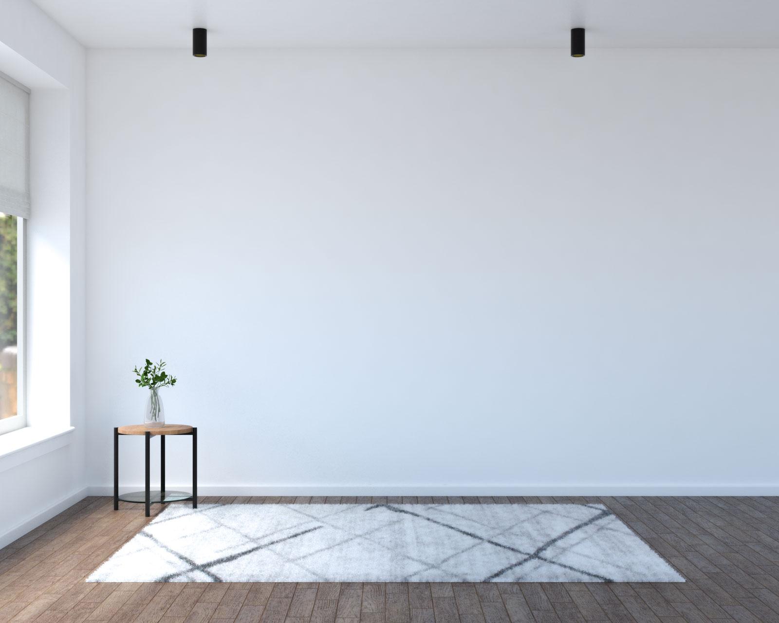 Contemporary light gray area rug