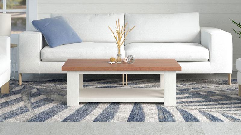 Best Rug for Coastal Living Room