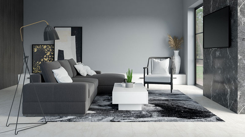 What Color Paint Goes with Black and White Furniture?